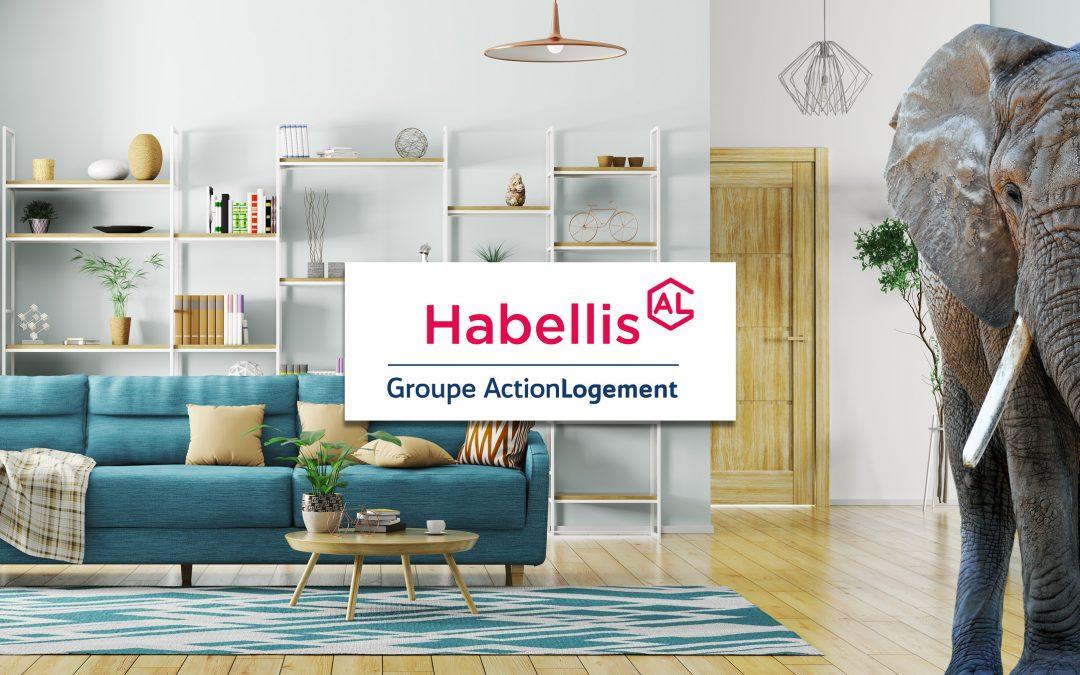 Brennus Habitat devient Habellis